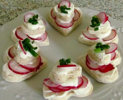 Toasts au fromage blanc et radis